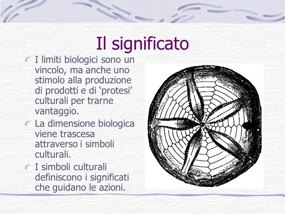 Il significato I limiti biologici sono un vincolo, ma anche uno stimolo alla produzione di prodotti e di protesi culturali per trarne vantaggio. La di
