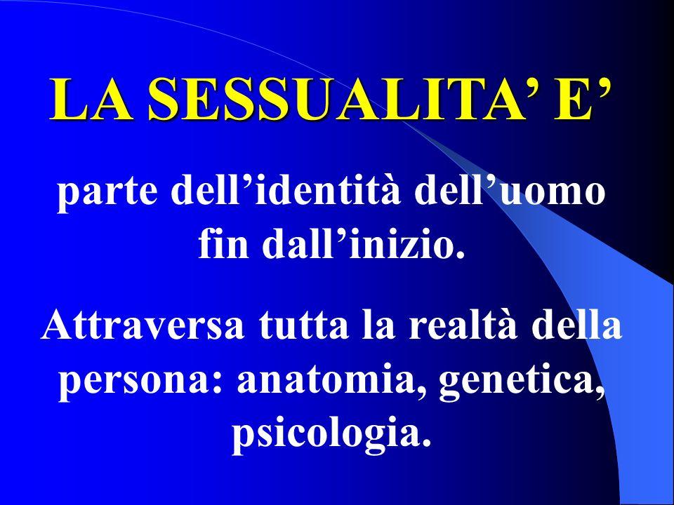 LA SESSUALITA E parte dellidentità delluomo fin dallinizio. Attraversa tutta la realtà della persona: anatomia, genetica, psicologia.