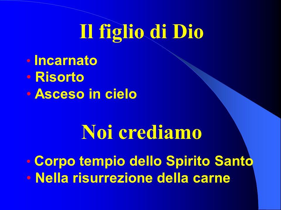 Il figlio di Dio Incarnato Risorto Asceso in cielo Noi crediamo Corpo tempio dello Spirito Santo Nella risurrezione della carne