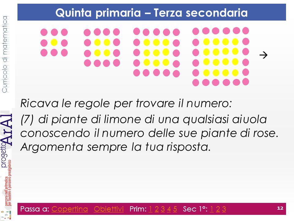 Ricava le regole per trovare il numero: (7) di piante di limone di una qualsiasi aiuola conoscendo il numero delle sue piante di rose.