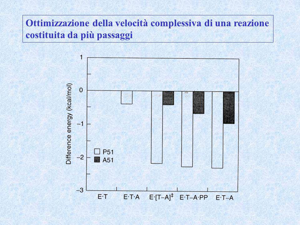 Ottimizzazione della velocità complessiva di una reazione costituita da più passaggi