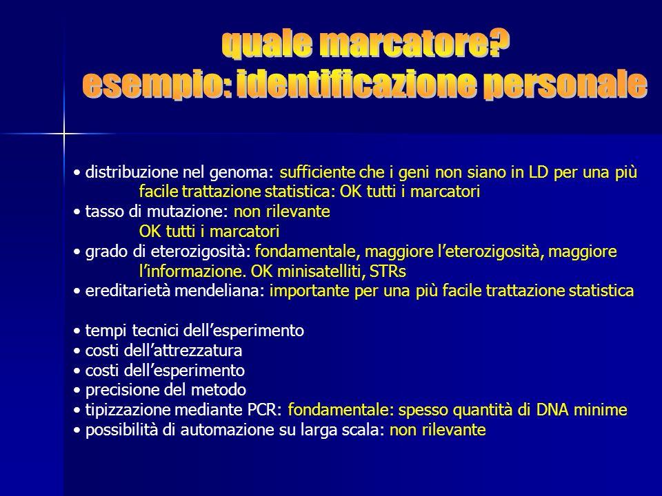 distribuzione nel genoma: sufficiente che i geni non siano in LD per una più facile trattazione statistica: OK tutti i marcatori tasso di mutazione: n