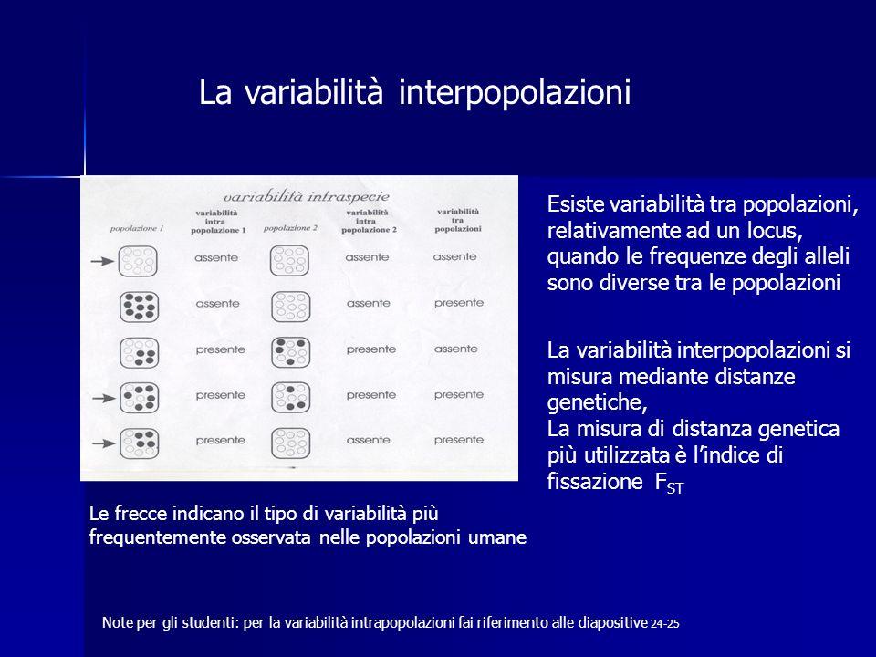 La variabilità interpopolazioni Le frecce indicano il tipo di variabilità più frequentemente osservata nelle popolazioni umane Esiste variabilità tra