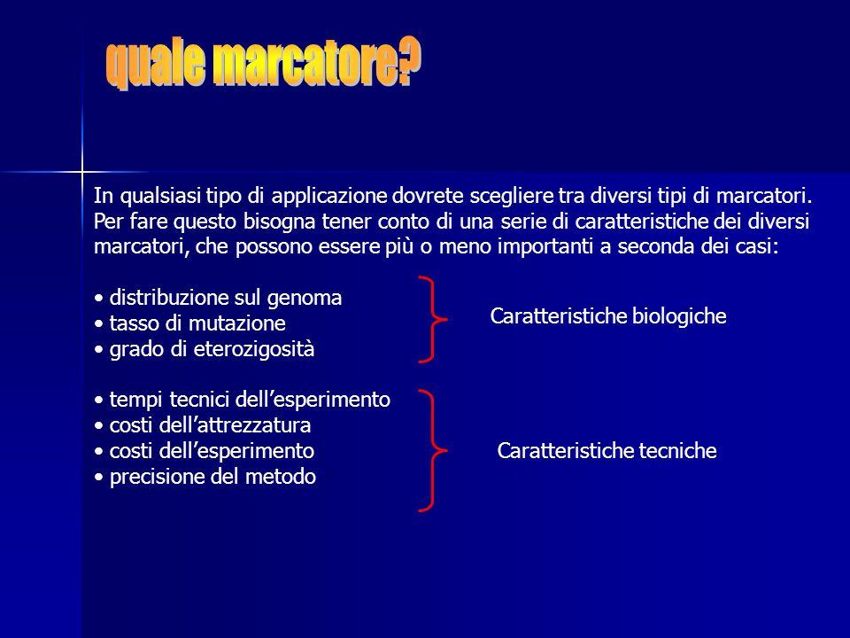 distribuzione sul genoma tasso di mutazione grado di eterozigosità tempi tecnici dellesperimento costi dellesperimento possibilità di tipizzare con PCR costi dellattrezzatura precisione del metodo Escludiamo, per tutte le applicazioni, polimorfismi di repeats telomeriche, macrosatelliti, varianti strutturali Escludiamo, per tutte le applicazioni, variazioni di numero e grandi variazioni di struttura dei cromosomi Consideriamo quindi: SNPs (include SNS e insdel di una base); piccole insdel > 1bp; microsatelliti, minisatelliti, polimorfismi Alu e LINE1