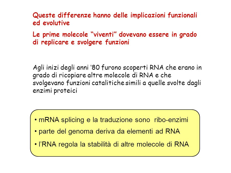 1000V22 mA RNAcircolare RNA e DNA sono carichi negativamente catodo- anodo+ Analisi di RNA marcato su gel e autoradiografia