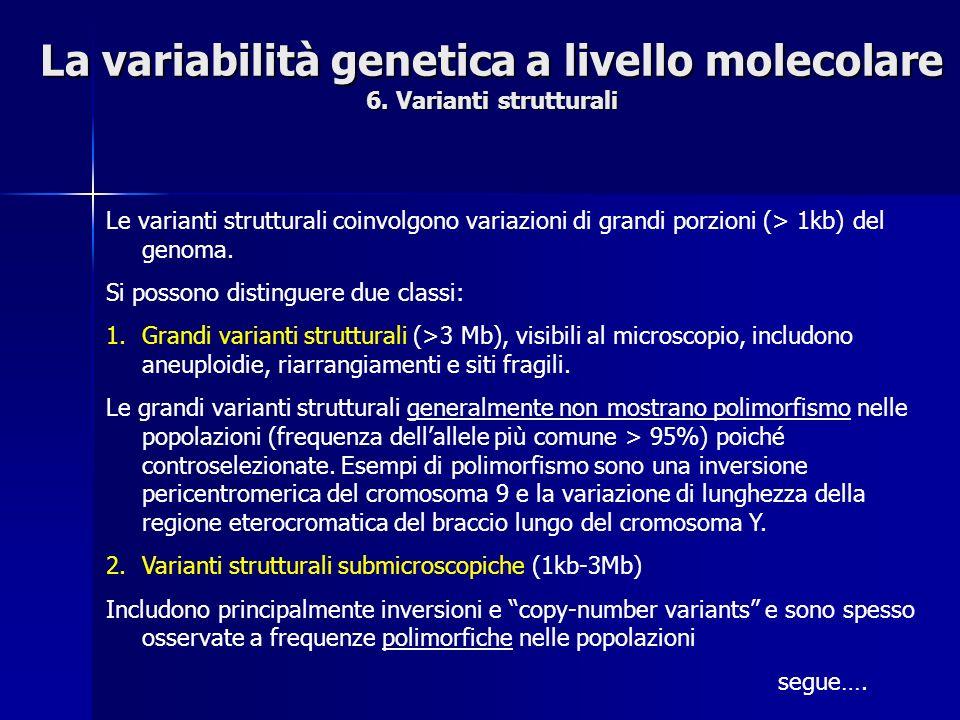 La variabilità genetica a livello molecolare 6. Varianti strutturali Le varianti strutturali coinvolgono variazioni di grandi porzioni (> 1kb) del gen