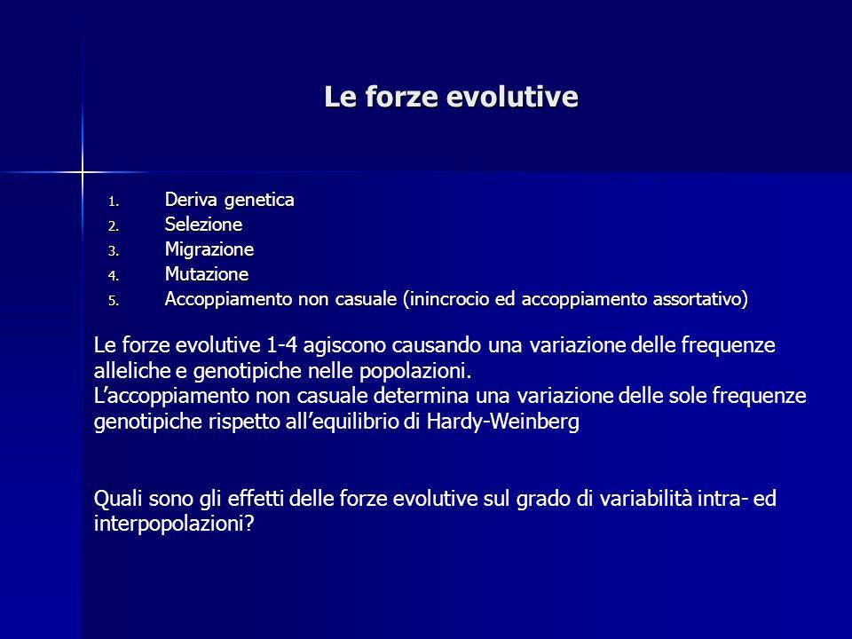 Le forze evolutive 1.Deriva genetica 2. Selezione 3.
