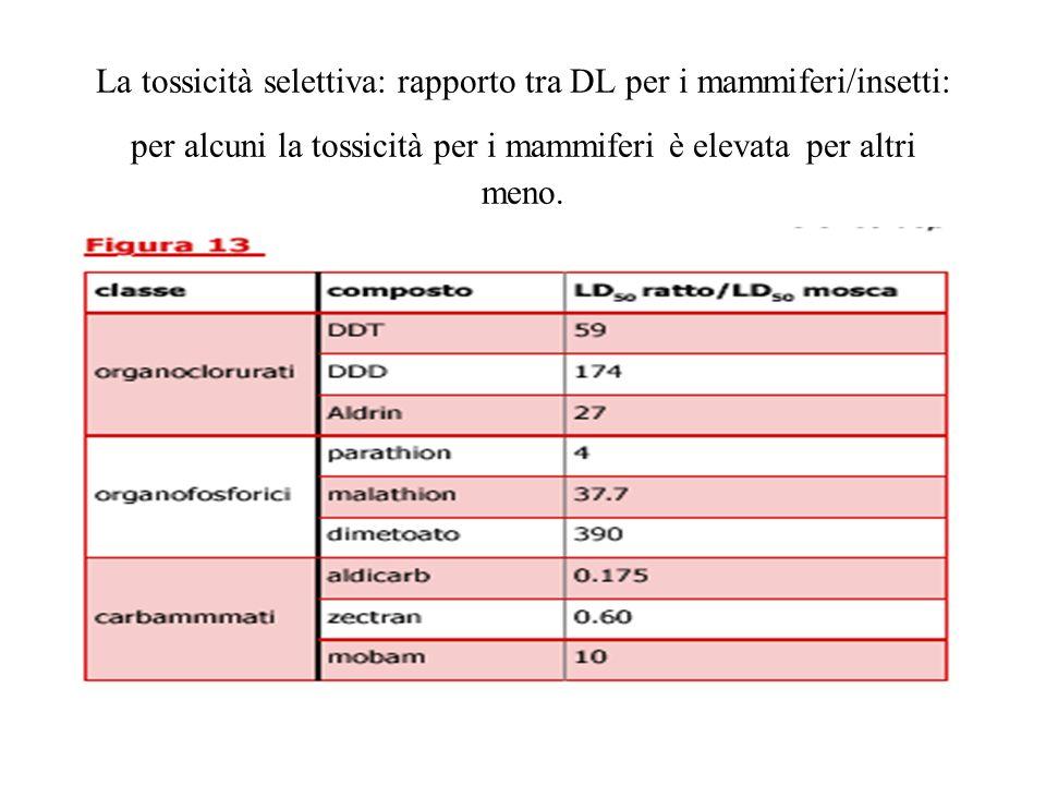 La tossicità selettiva: rapporto tra DL per i mammiferi/insetti: per alcuni la tossicità per i mammiferi è elevata per altri meno.
