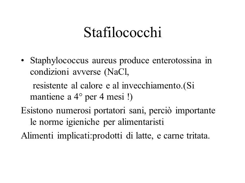Stafilococchi Staphylococcus aureus produce enterotossina in condizioni avverse (NaCl, resistente al calore e al invecchiamento.(Si mantiene a 4° per