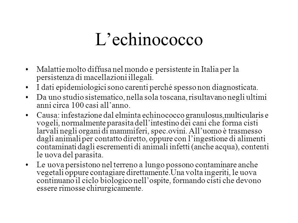 Lechinococco Malattie molto diffusa nel mondo e persistente in Italia per la persistenza di macellazioni illegali. I dati epidemiologici sono carenti