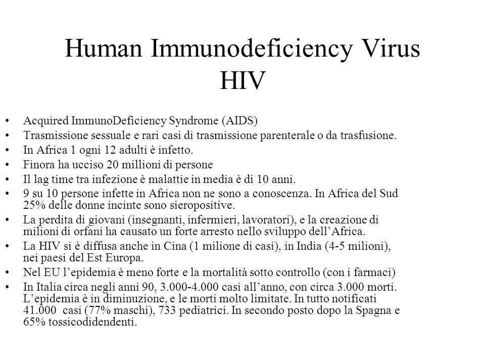 Rischio di Trasmissione del HIV agli operatori sanitari Evenienza molto rara: da numerosi studi non risulta trasmissione persino per chi si è punto con ago infetto (un caso su 500 punture) Importante è il principio di precauzione universale per tutte le infezioni