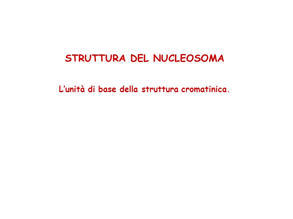 STRUTTURA DEL NUCLEOSOMA Lunità di base della struttura cromatinica.