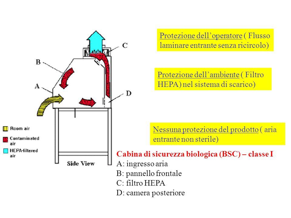 Protezione delloperatore ( Flusso laminare entrante senza ricircolo) Protezione dellambiente ( Filtro HEPA) nel sistema di scarico) Nessuna protezione