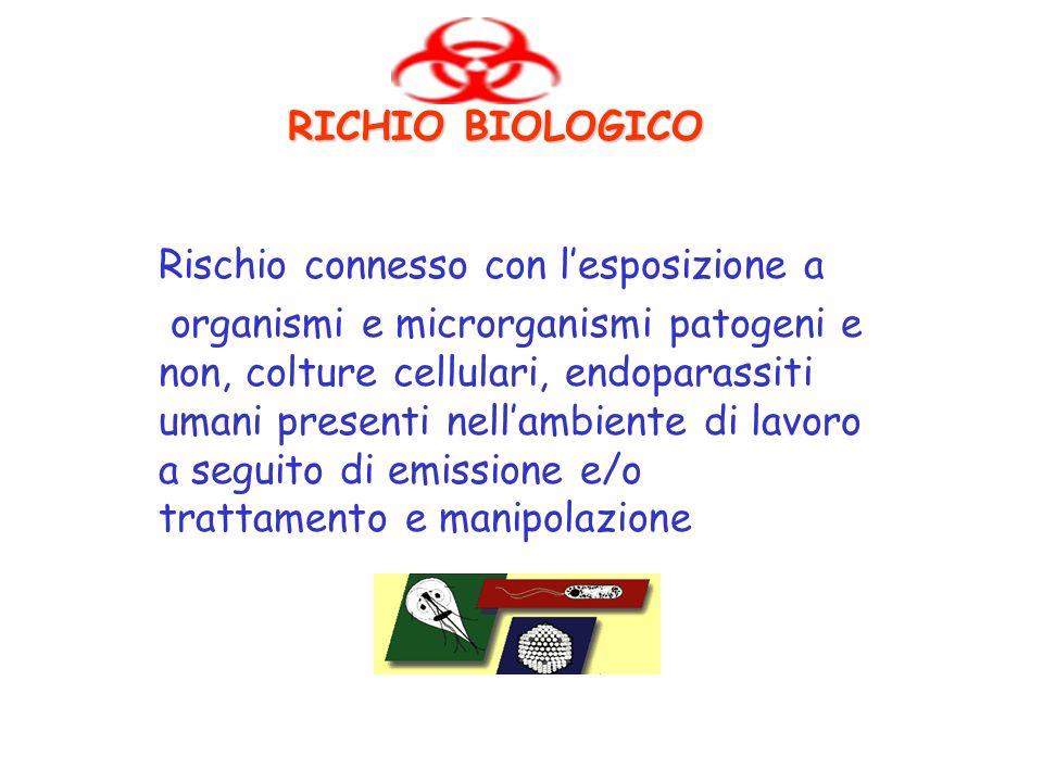 RICHIO BIOLOGICO Rischio connesso con lesposizione a organismi e microrganismi patogeni e non, colture cellulari, endoparassiti umani presenti nellamb