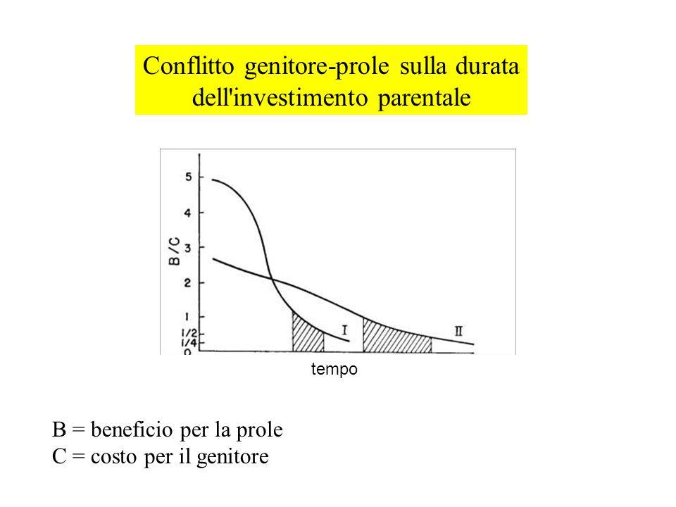 Conflitto genitore-prole sulla durata dell'investimento parentale B = beneficio per la prole C = costo per il genitore tempo