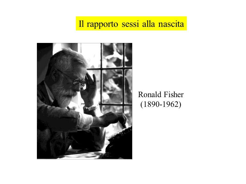 Il rapporto sessi alla nascita Ronald Fisher (1890-1962)