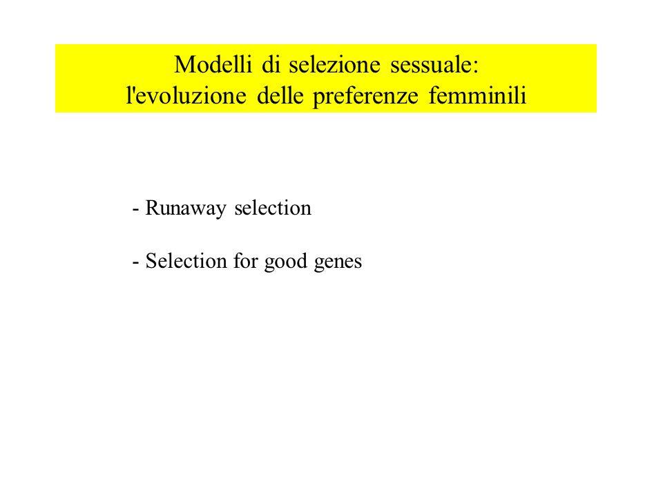 Modelli di selezione sessuale: l evoluzione delle preferenze femminili - Runaway selection - Selection for good genes