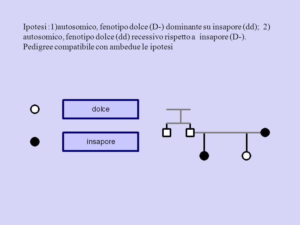 Ipotesi :1)autosomico, fenotipo dolce (D-) dominante su insapore (dd); 2) autosomico, fenotipo dolce (dd) recessivo rispetto a insapore (D-). Pedigree