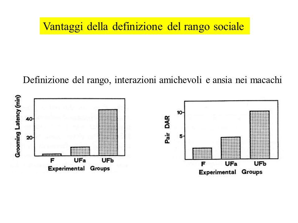 Vantaggi della definizione del rango sociale Definizione del rango, interazioni amichevoli e ansia nei macachi