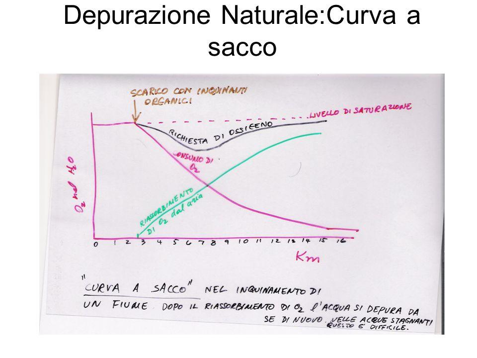Processi depurativi (1) Depurazione: trasformazione del liquame di fogna in un liquido senza odore, attraverso la mineralizzazione delle sostane organiche in due fasi: -1.