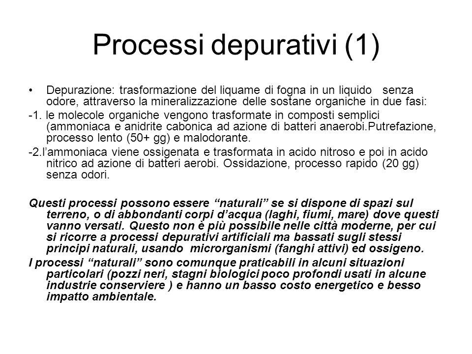 Processi depurativi (1) Depurazione: trasformazione del liquame di fogna in un liquido senza odore, attraverso la mineralizzazione delle sostane organ