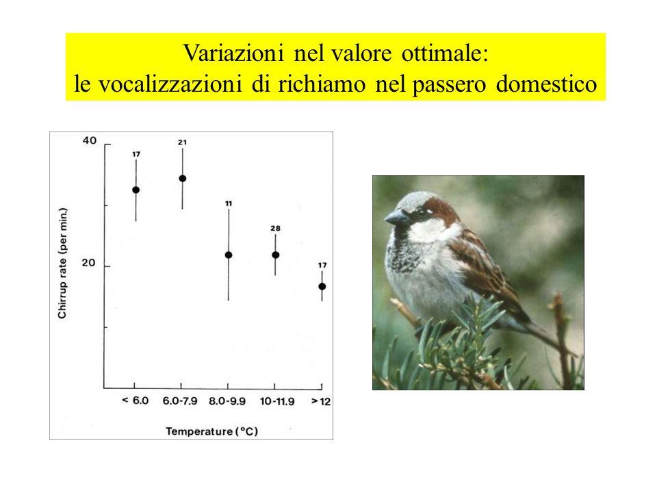 Variazioni nel valore ottimale: le vocalizzazioni di richiamo nel passero domestico