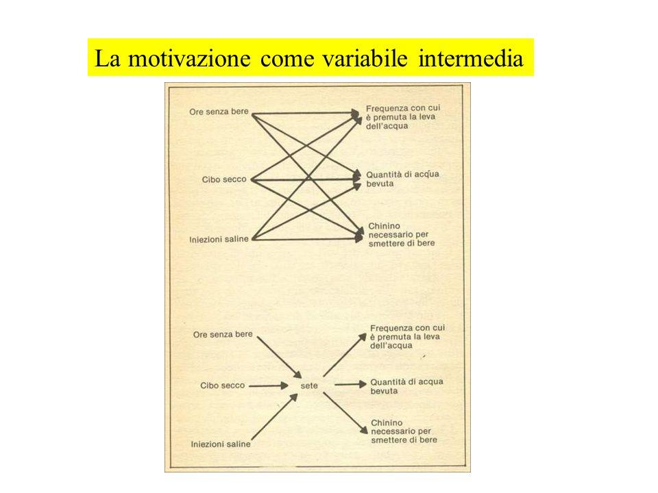 La motivazione come variabile intermedia