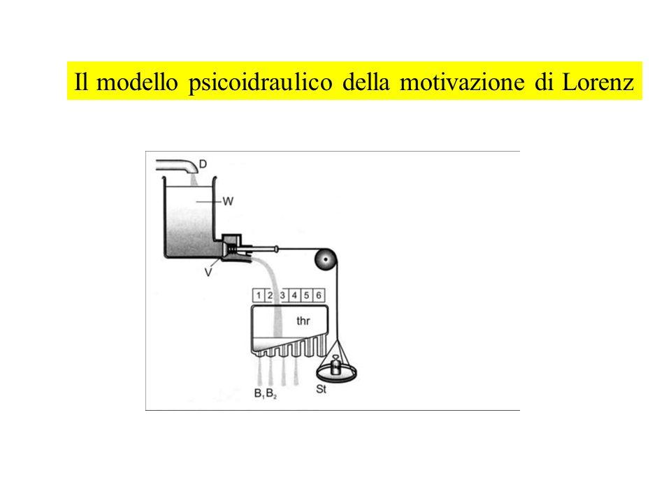 Il modello psicoidraulico della motivazione di Lorenz
