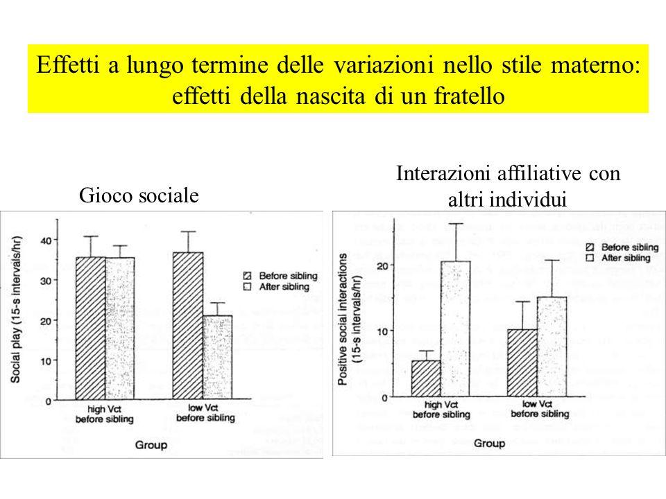 Effetti a lungo termine delle variazioni nello stile materno: effetti della nascita di un fratello Gioco sociale Interazioni affiliative con altri ind