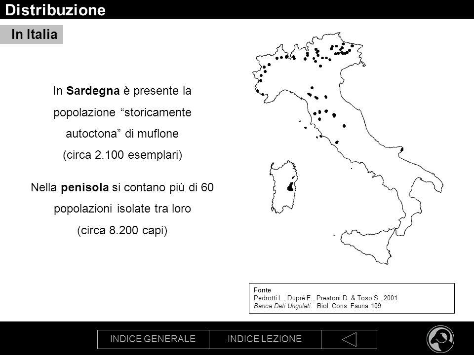 INDICE GENERALEINDICE LEZIONE Distribuzione Fonte Pedrotti L., Dupré E., Preatoni D. & Toso S., 2001 Banca Dati Ungulati. Biol. Cons. Fauna 109 In Sar