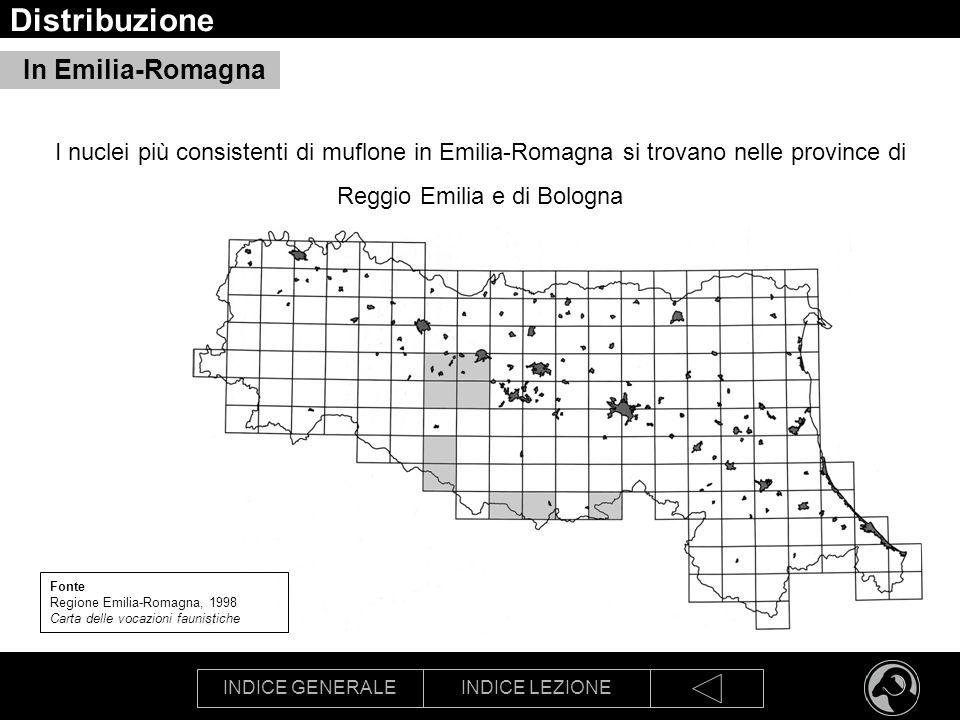 INDICE GENERALEINDICE LEZIONE Distribuzione In Emilia-Romagna Fonte Regione Emilia-Romagna, 1998 Carta delle vocazioni faunistiche I nuclei più consis