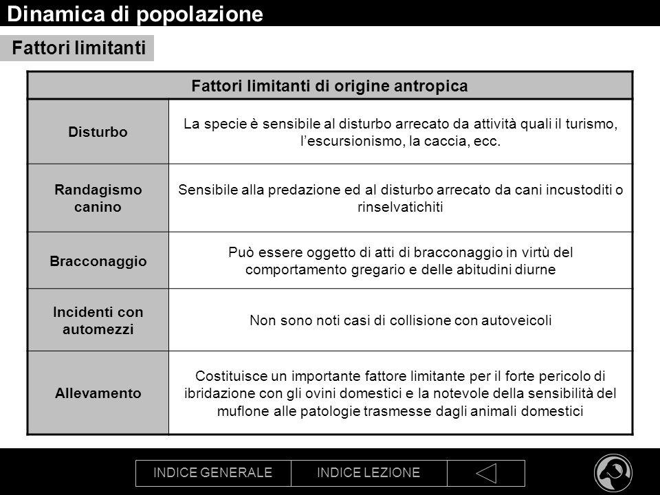 INDICE GENERALEINDICE LEZIONE Dinamica di popolazione Fattori limitanti Fattori limitanti di origine antropica Disturbo La specie è sensibile al distu