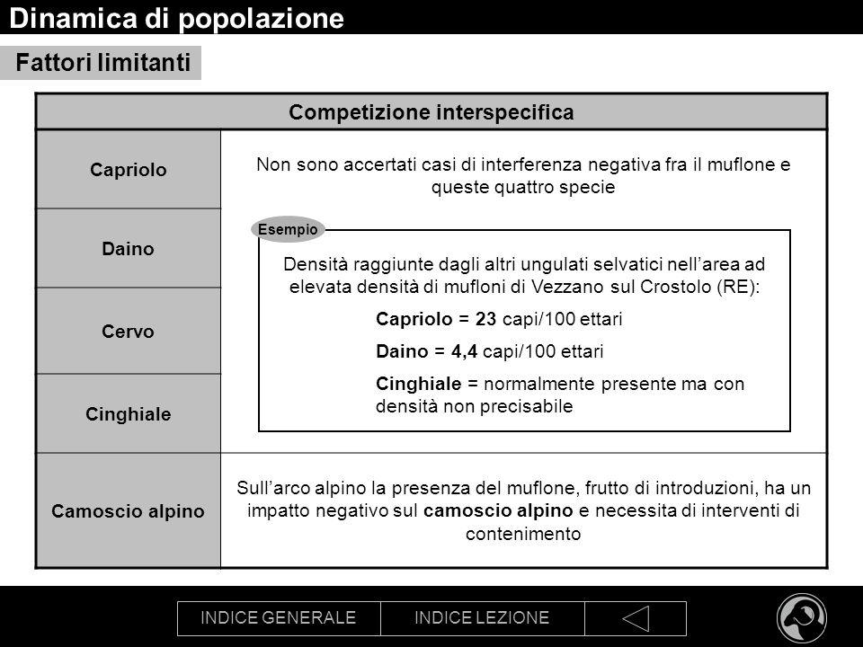 INDICE GENERALEINDICE LEZIONE Dinamica di popolazione Competizione interspecifica Capriolo Non sono accertati casi di interferenza negativa fra il muf