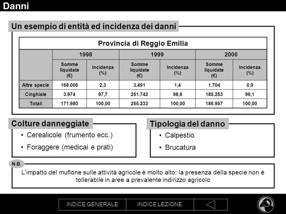 INDICE GENERALEINDICE LEZIONE Danni Provincia di Reggio Emilia 199819992000 Somme liquidate () Incidenza (%) Somme liquidate () Incidenza (%) Somme li