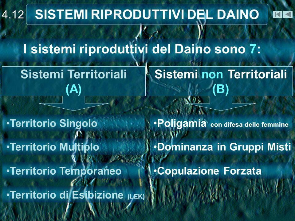 4.12 SISTEMI RIPRODUTTIVI DEL DAINO I sistemi riproduttivi del Daino sono 7: Territorio Singolo Territorio Multiplo Territorio Temporaneo Territorio d