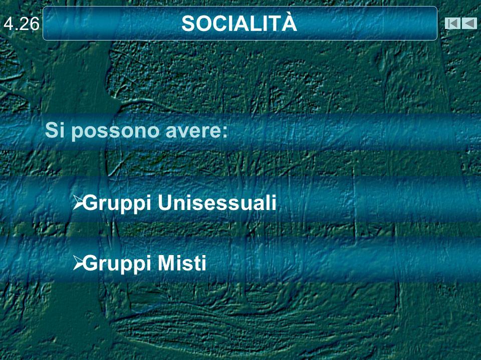 Gruppi Unisessuali Gruppi Misti Si possono avere: SOCIALITÀ 4.26