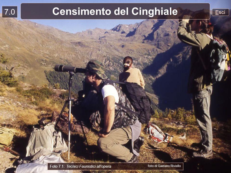 7.0 Esci Censimento del Cinghiale Foto 7.1: Tecnici Faunistici allopera foto di Gaetano Riviello