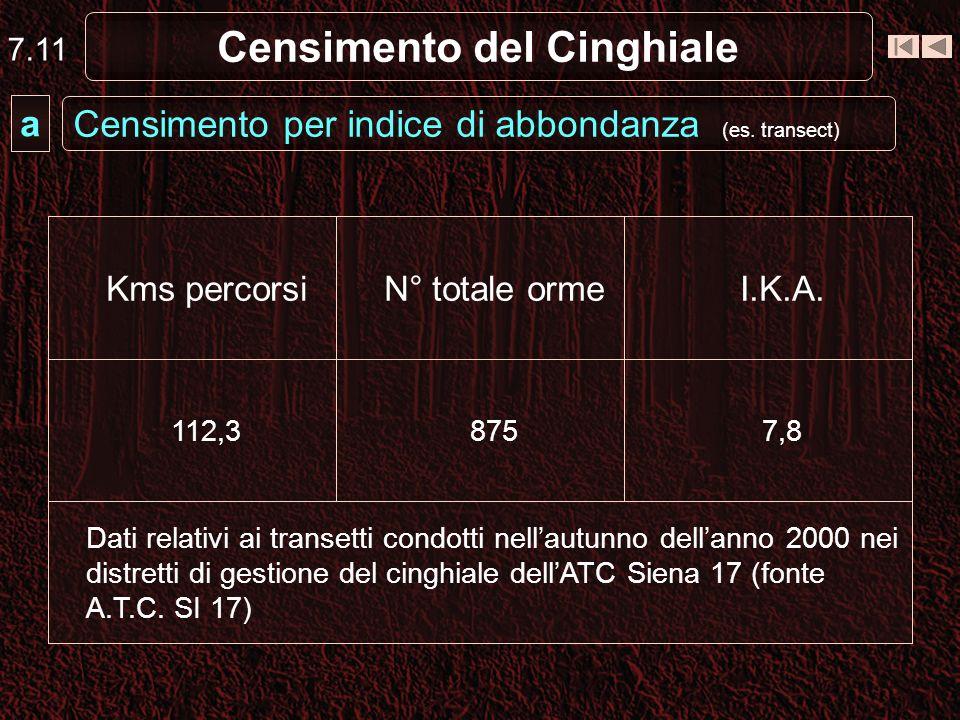 Censimento del Cinghiale Censimento per indice di abbondanza (es. transect) a 7.11 Dati relativi ai transetti condotti nellautunno dellanno 2000 nei d