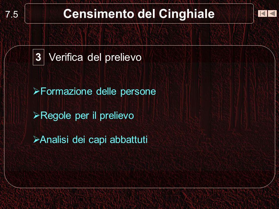 7.5 Censimento del Cinghiale Verifica del prelievo Formazione delle persone Regole per il prelievo 3 Analisi dei capi abbattuti