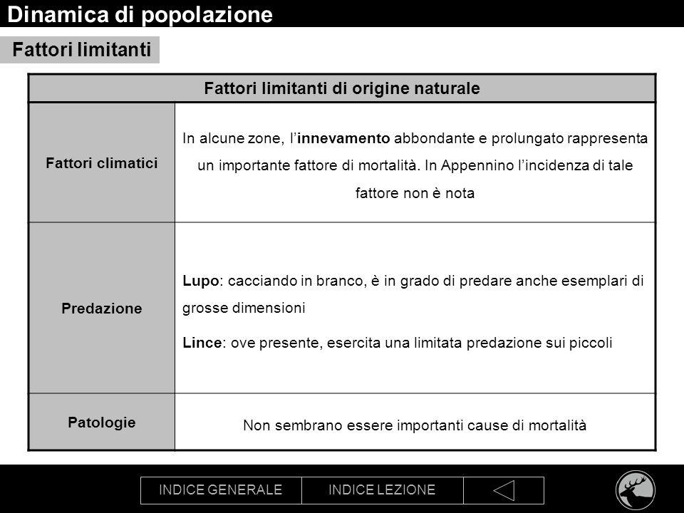 INDICE GENERALEINDICE LEZIONE Dinamica di popolazione Fattori limitanti di origine naturale Fattori climatici In alcune zone, linnevamento abbondante