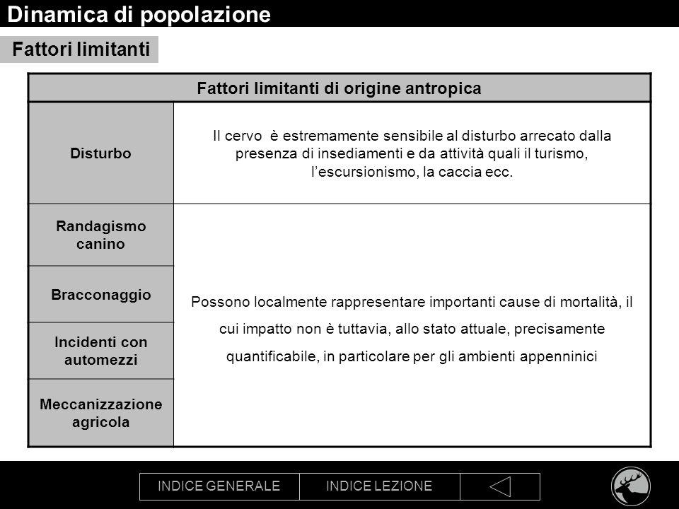 INDICE GENERALEINDICE LEZIONE Dinamica di popolazione Fattori limitanti Fattori limitanti di origine antropica Disturbo Il cervo è estremamente sensib