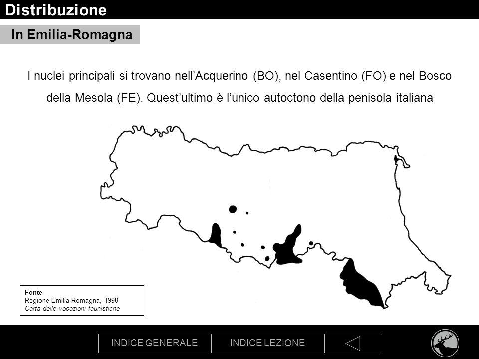 INDICE GENERALEINDICE LEZIONE Distribuzione In Emilia-Romagna Fonte Regione Emilia-Romagna, 1998 Carta delle vocazioni faunistiche I nuclei principali