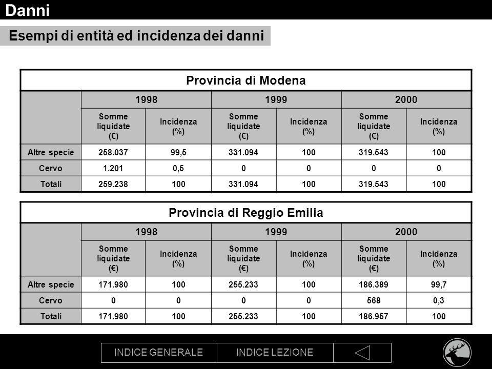 INDICE GENERALEINDICE LEZIONE Danni Esempi di entità ed incidenza dei danni Provincia di Modena 199819992000 Somme liquidate () Incidenza (%) Somme li