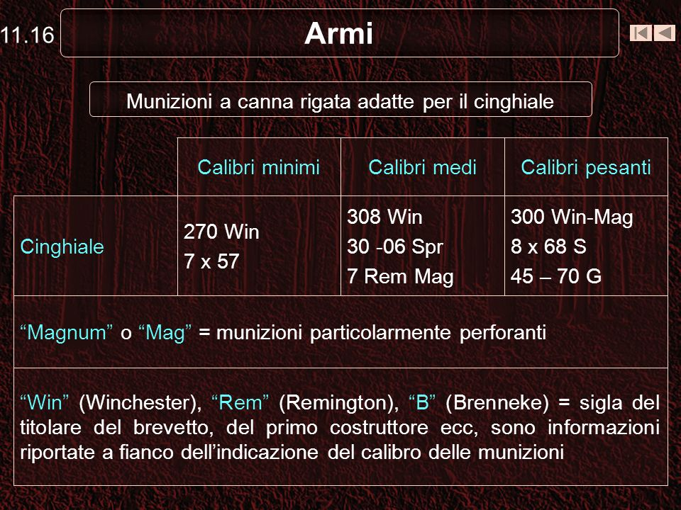 Armi Il proiettile raggiungerà velocità limitate e percorrerà traiettorie relativamente brevi Foto 11.1: Fucile a canna liscia foto di Gaetano Riviell