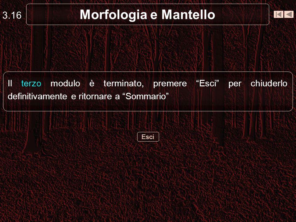 Morfologia e Mantello 3.16 Esci Il terzo modulo è terminato, premere Esci per chiuderlo definitivamente e ritornare a Sommario