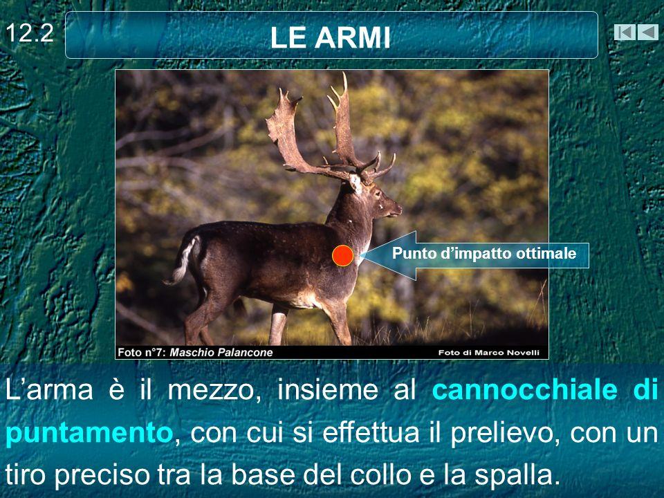 Larma è il mezzo, insieme al cannocchiale di puntamento, con cui si effettua il prelievo, con un tiro preciso tra la base del collo e la spalla.