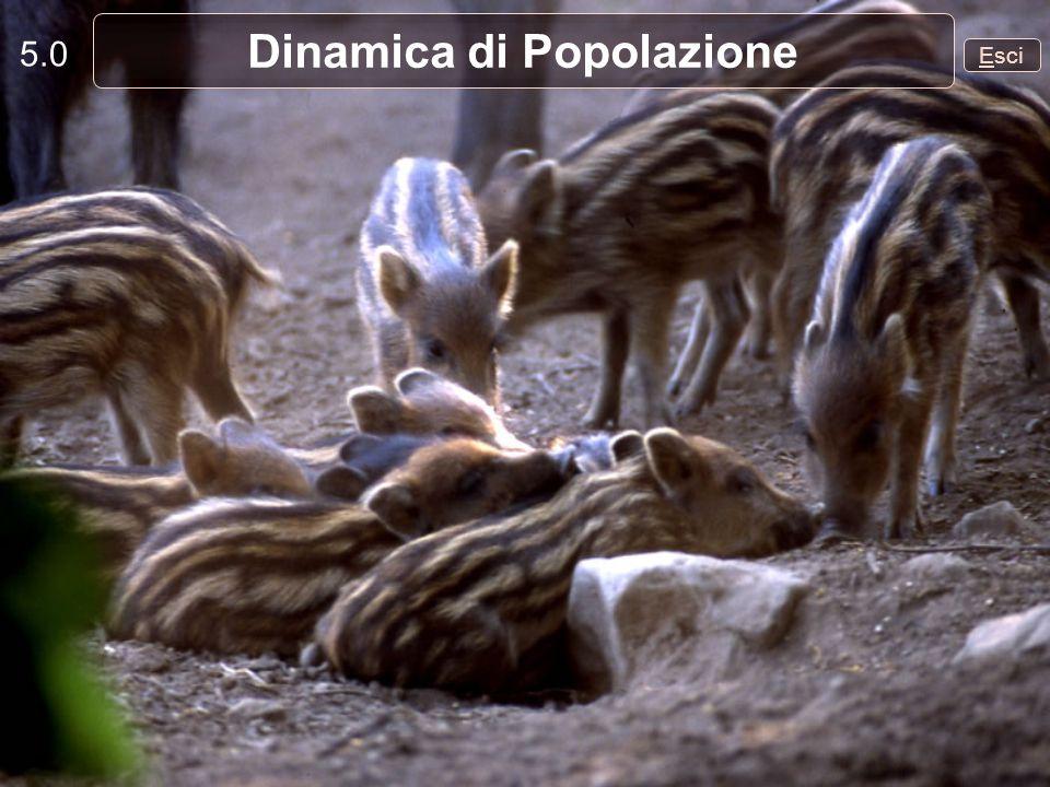 5.0 Esci Dinamica di Popolazione