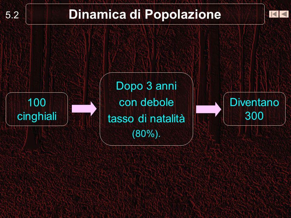 5.2 Dinamica di Popolazione 100 cinghiali Diventano 300 Dopo 3 anni con debole tasso di natalità (80%).