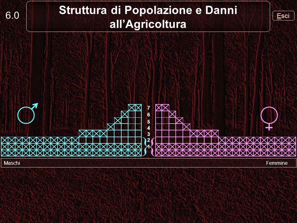 La piramide detà di una popolazione di cinghiale ha la base molto ampia 6.1 Struttura di Popolazione e Danni allAgricoltura Maschi Femmine { } 1 2 3 4 5 6 7