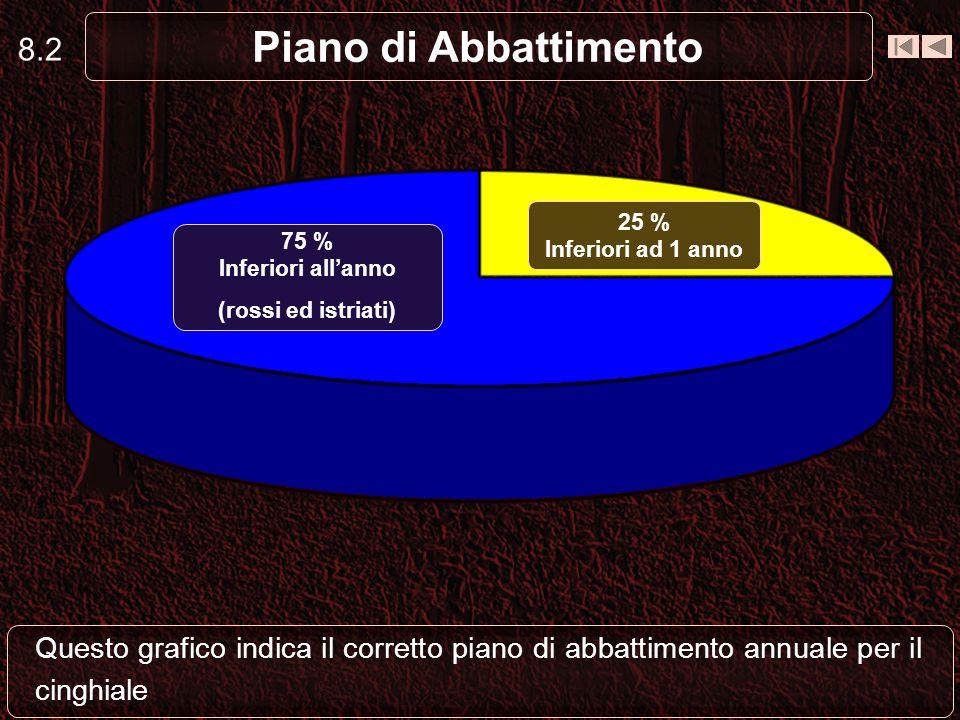 8.1 Piano di Abbattimento In una gestione con cui si desidera conservare lattuale densità di cinghiali: - Il 75% del P. A. dovrebbe riguardare gli ani